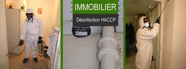 Désinsectisation, dératisation Immobilier Toulon