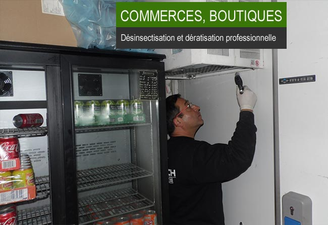 Dératisation boutique