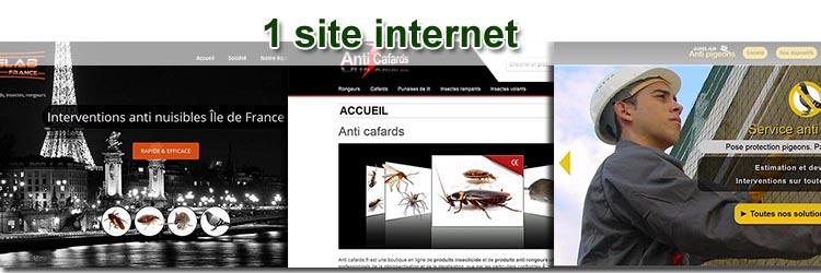 Site internet  désinfection 3d